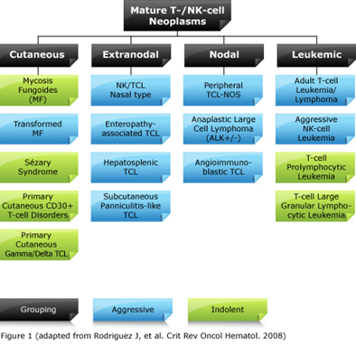 Mature T-/NK-cell Neoplasms